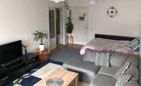 Boka 2019 - Lägenhet 2,3 km från söderport